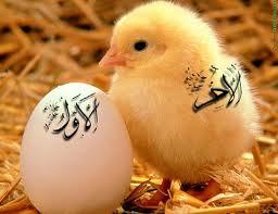 Dini islami Sözler Derki